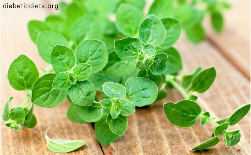 گیاهان برای درمان سریع دیابت
